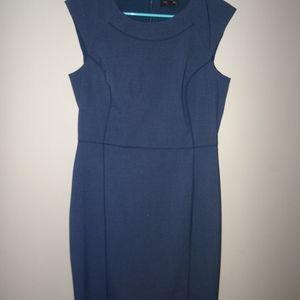 The Limited Collection Navy Blue Dress
